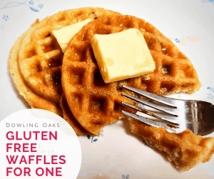 Gluten free waffles on a plate